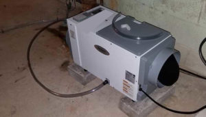 Dehumidifier For Wet Basement Fairfax Contractor